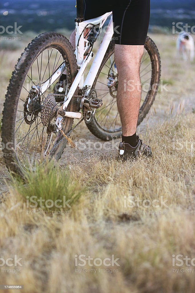 Mountain Biker royalty-free stock photo