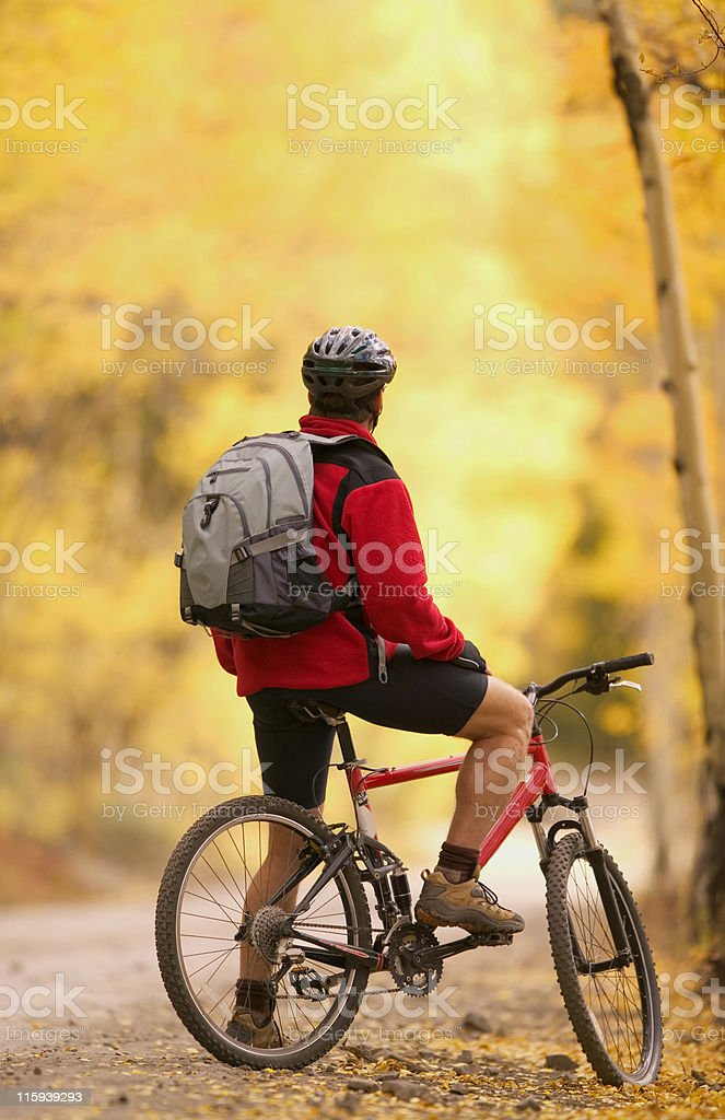 Mountain Biker Resting on Trail with Aspens royalty-free stock photo