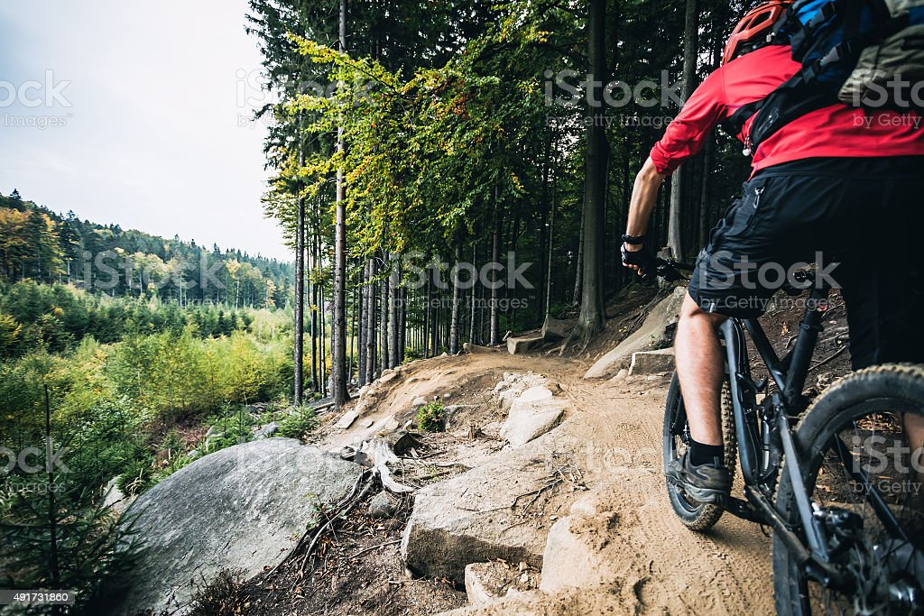 Mountain biker riding cycling in autumn forest stock photo