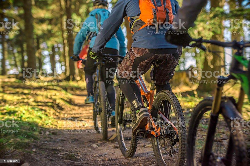 Mountain bikers riding through forest stock photo