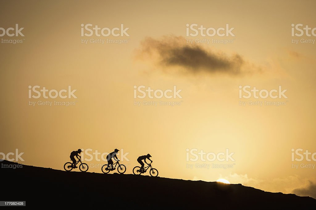 Mountain bikers Silhouette royalty-free stock photo