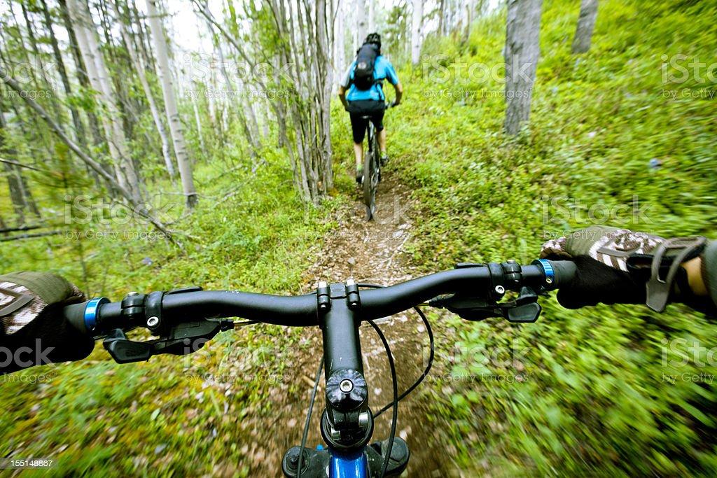 Mountain biking in spring. royalty-free stock photo