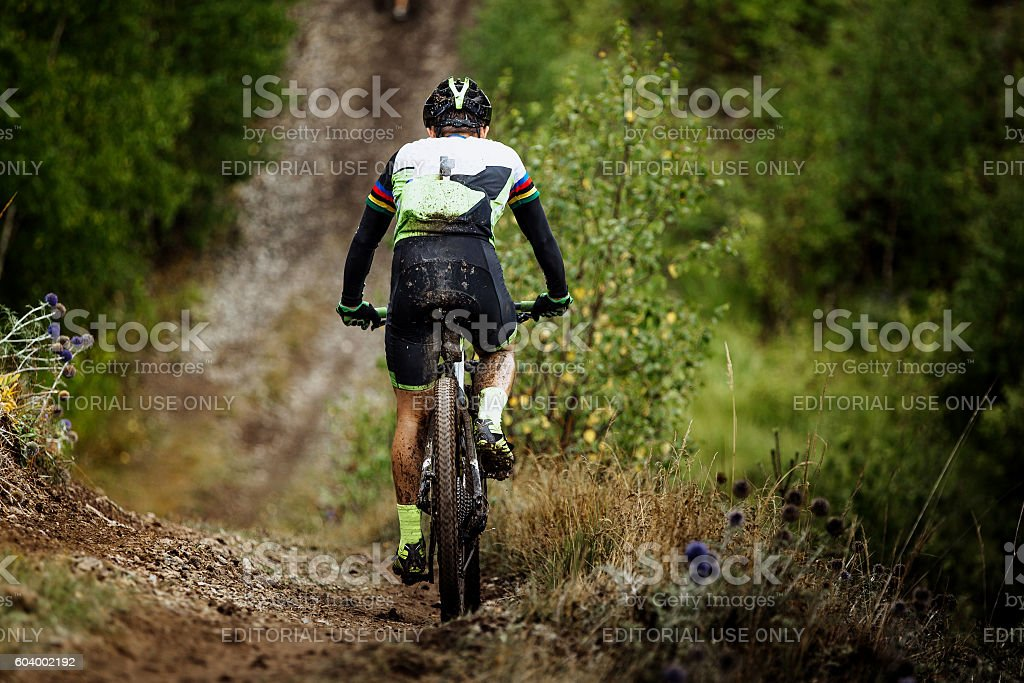 mountain biking in woods royalty-free 스톡 사진