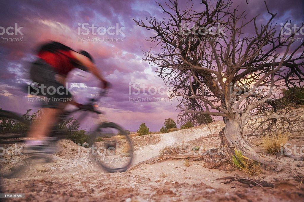 mountain biking motion royalty-free stock photo