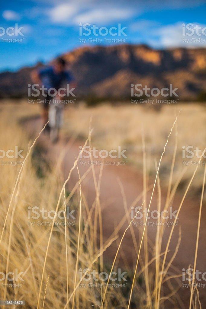 mountain biking nature abstract royalty-free stock photo