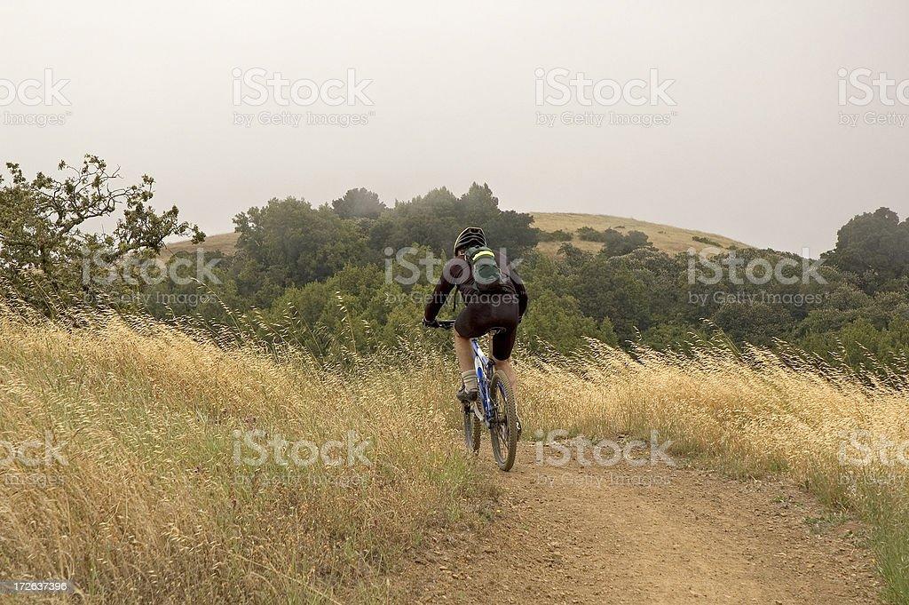 Andare in Mountain bike foto stock royalty-free