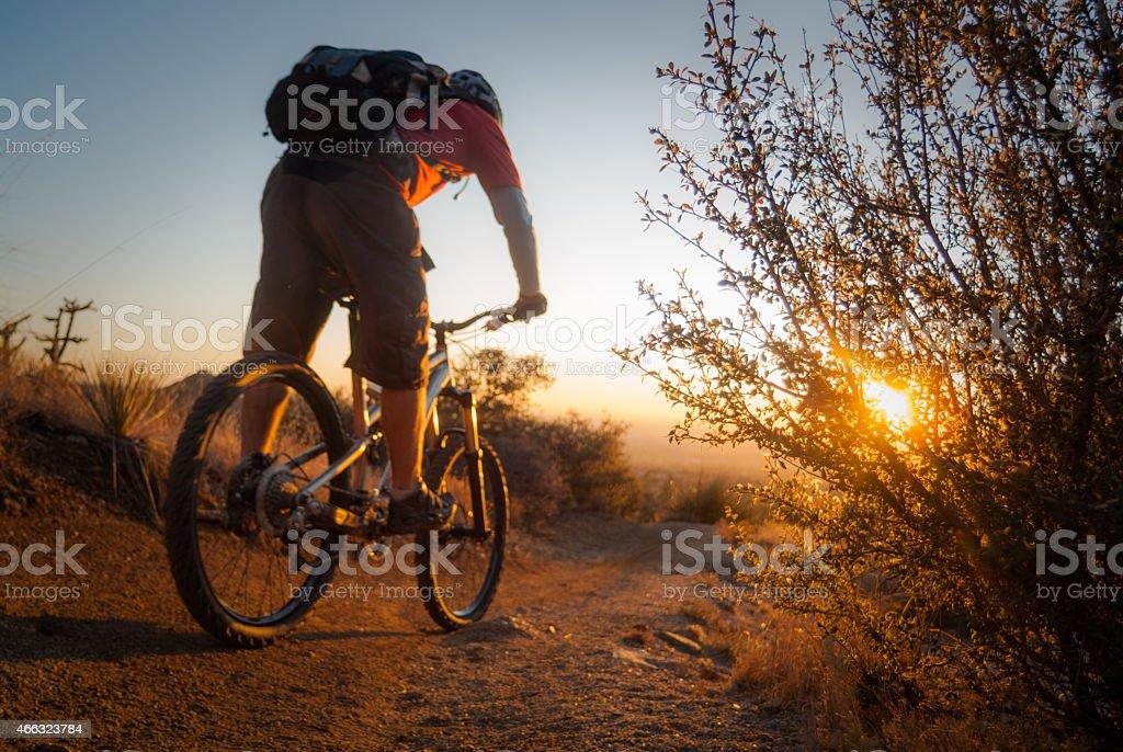 mountain biking sunset landscape bush stock photo