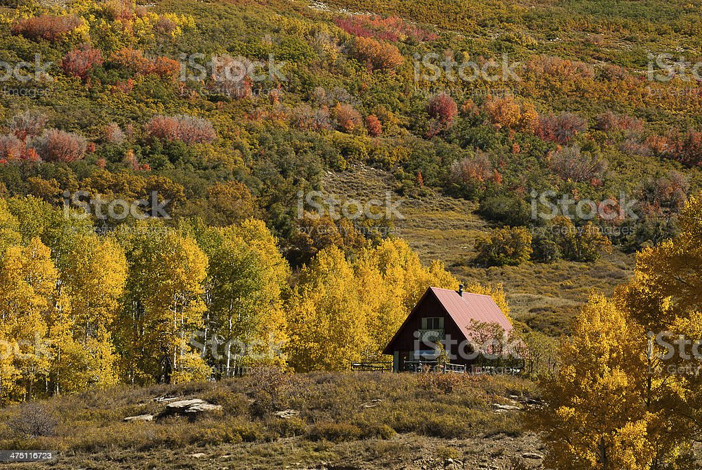 Mountain Cabin and Autumn Leaves near Kolob Reservoir Utah stock photo