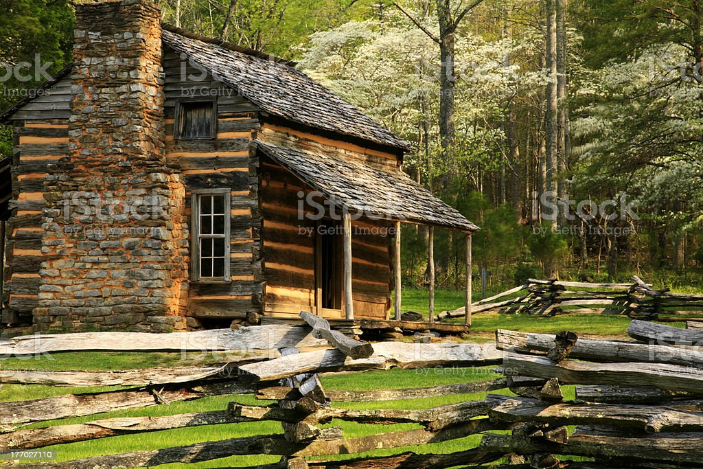 mountain cabin and dogwoods stock photo
