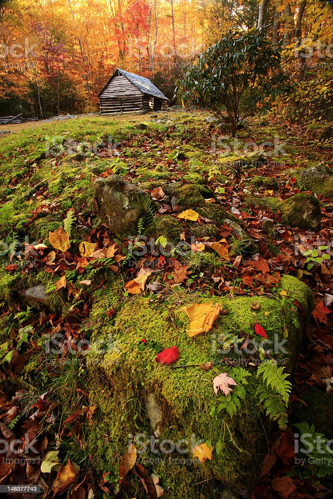 mountain cabin in autumn stock photo