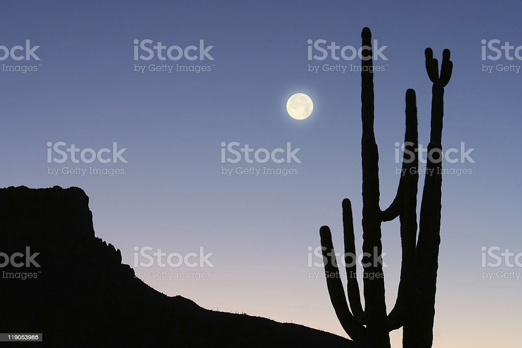 Mountain, Cactus and Moon royalty-free stock photo