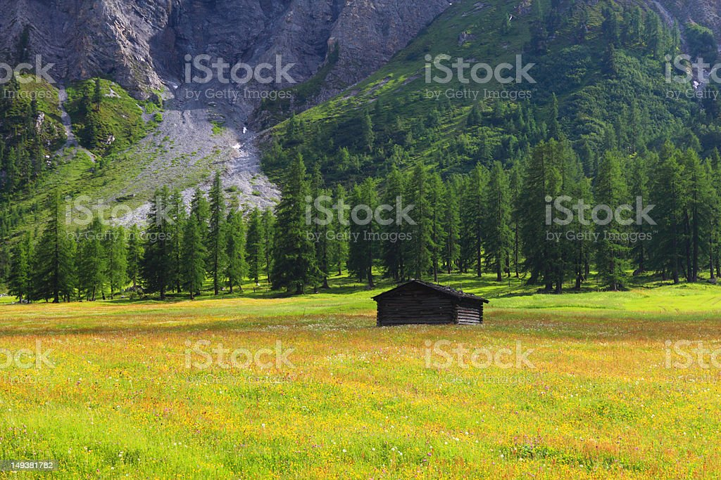 Mountain chalet on the flowering meadow royalty-free stock photo