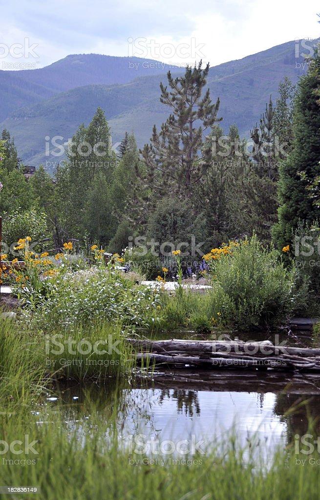 Mountain Damn royalty-free stock photo