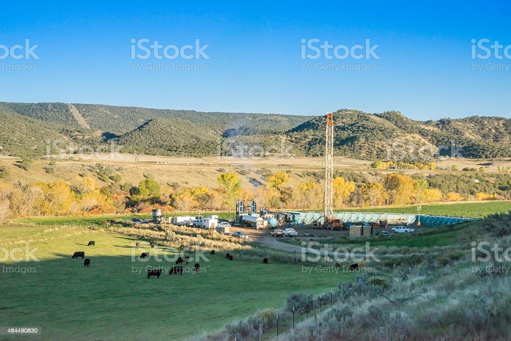 Mountain Drilling Fracking Rig with Cattle Herd in Field stock photo