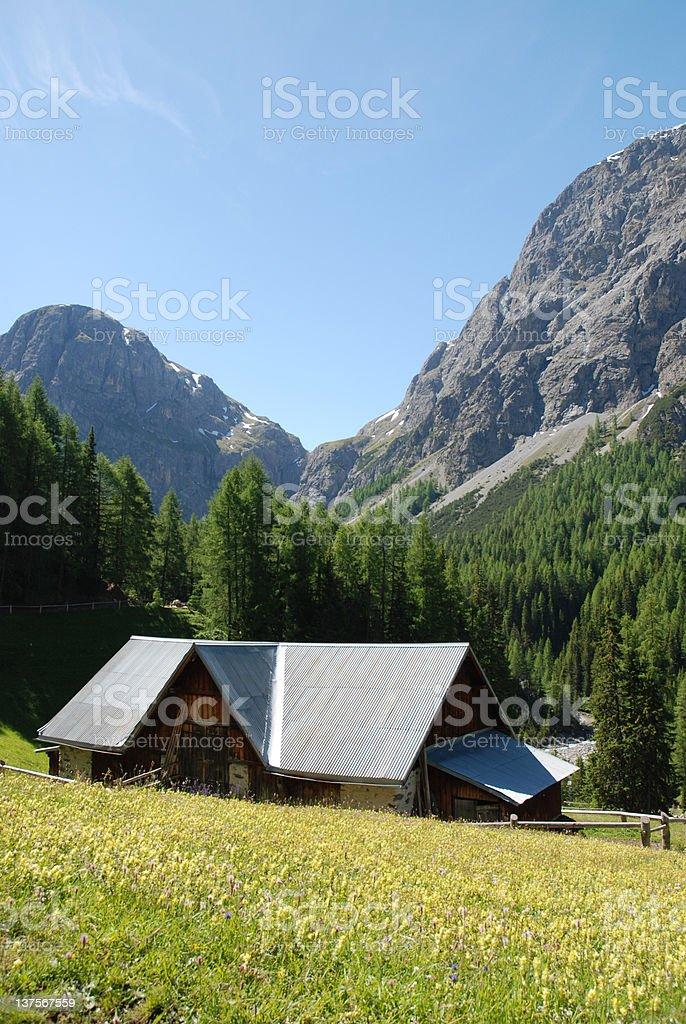 Mountain farm in Switzerland royalty-free stock photo