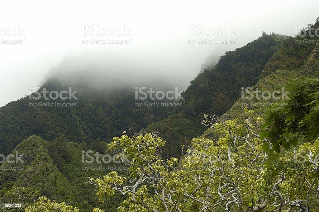 Mountain Fog stock photo