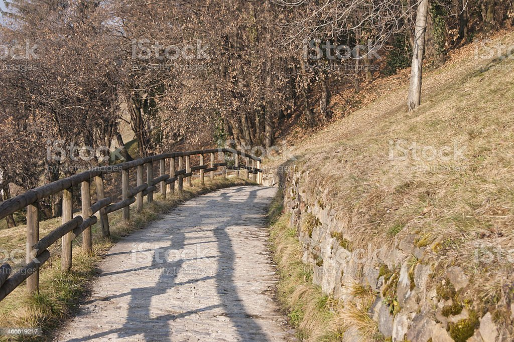 Mountain footpath with wooden fence stock photo
