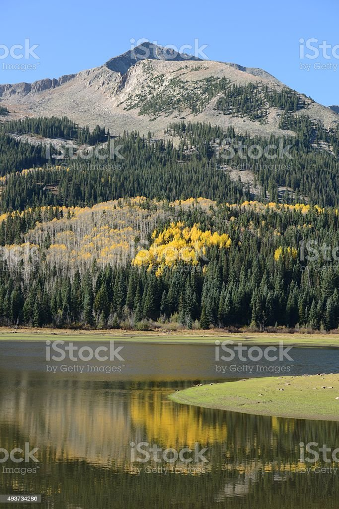 Mountain, Forest and Lake stock photo