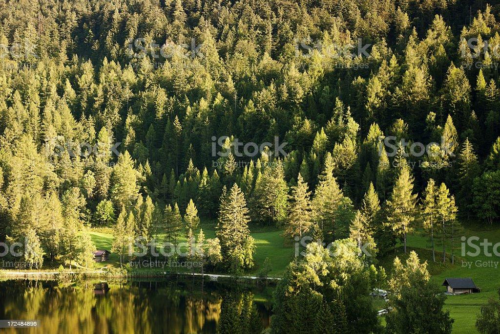 Mountain Forest Lake and Hut, Sunset Light, Upper Bavaria, Germany stock photo