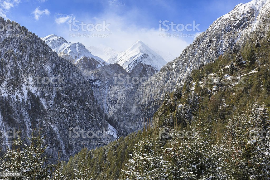 Mountain forest landscape royalty-free stock photo