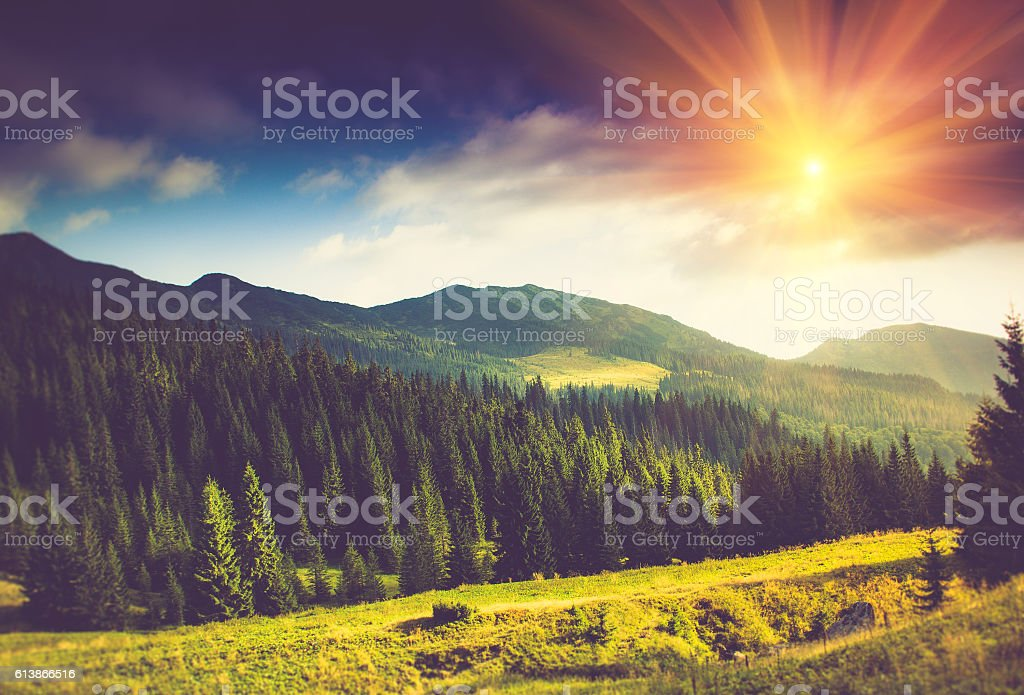 Mountain forest landscape under evening sky with clouds in sunlight. stock photo