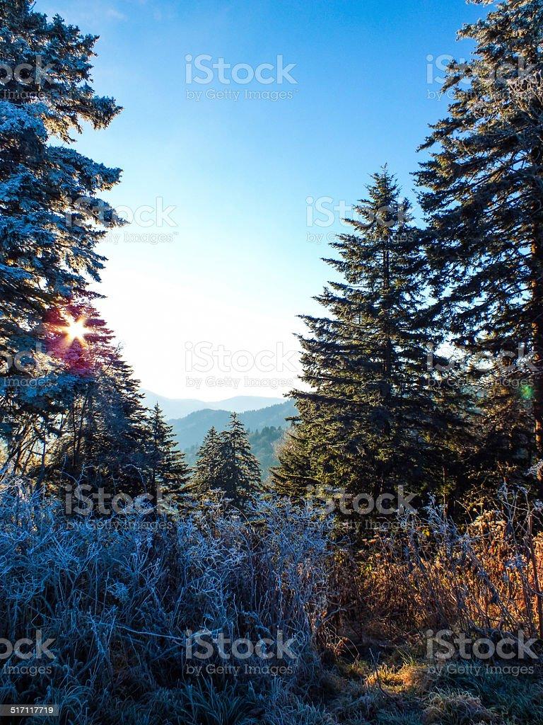 Mountain Frost stock photo