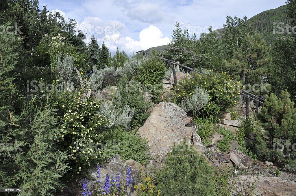 Mountain Garden royalty-free stock photo