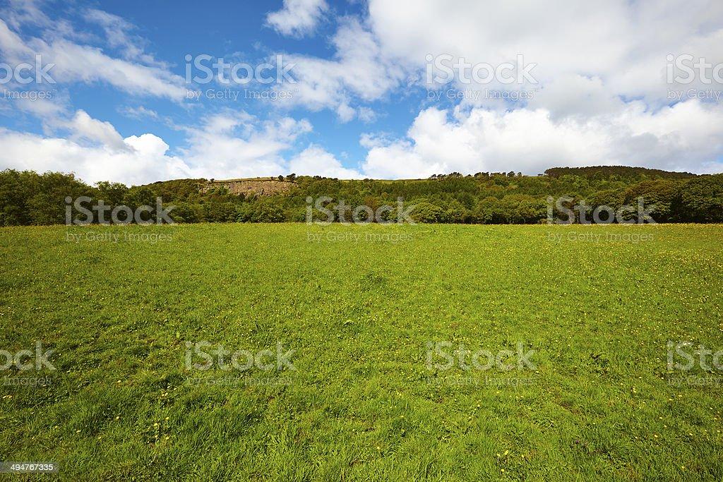 Mountain green field stock photo