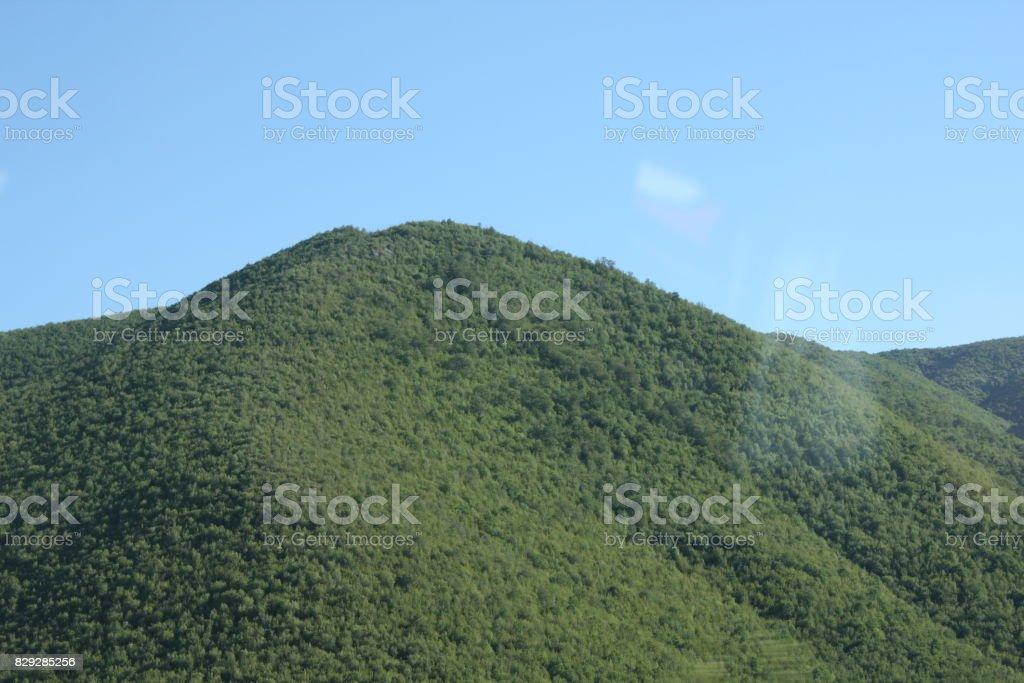 Mountain green landscape stock photo