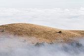 Mountain hills shrouded in low clouds, top Demerdji in Crimea