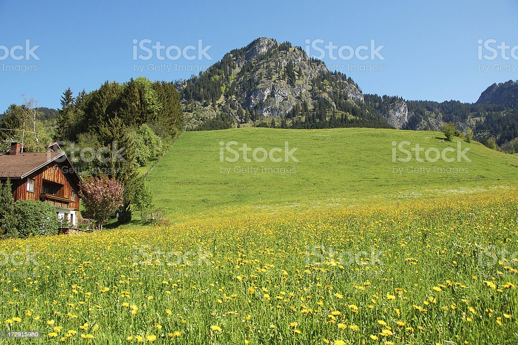 Mountain in the German Alps royalty-free stock photo