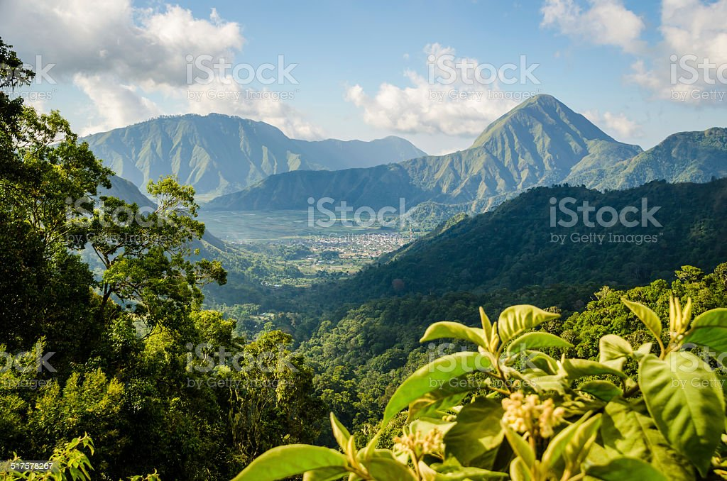 Mountain in the tropical forest stock photo