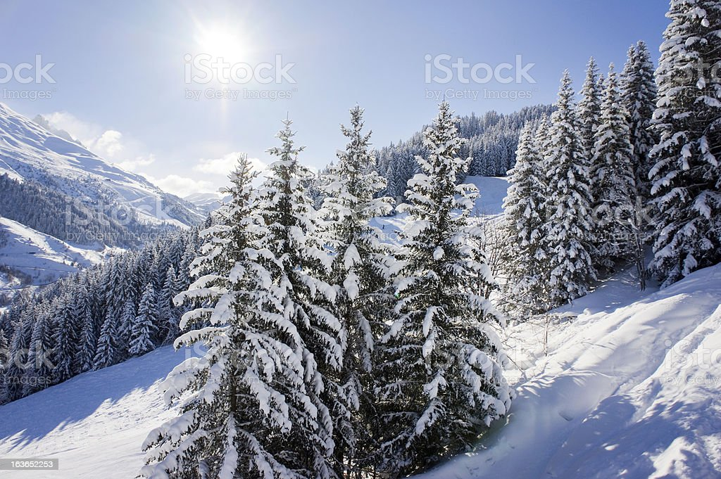 Mountain in winter royalty-free stock photo