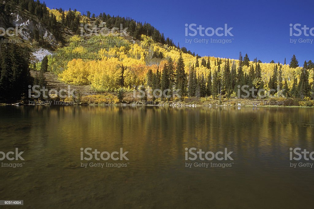 mountain lake and foliage colors royalty-free stock photo