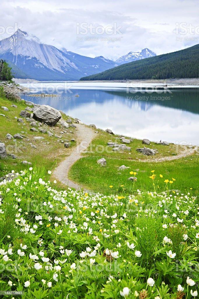 Mountain lake in Jasper National Park, Canada royalty-free stock photo
