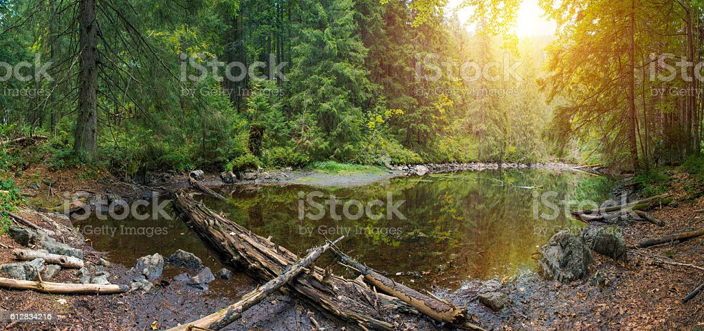 Mountain Lake in the wild taiga during heavy rain. stock photo