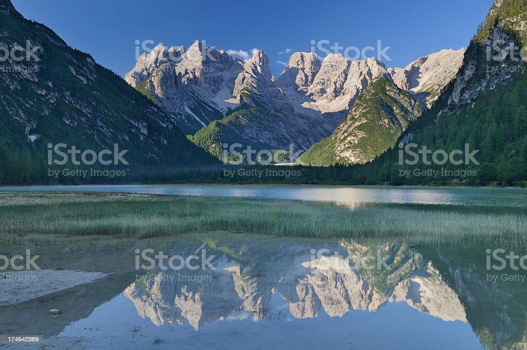Mountain Lake Reflection (Lago di Landro - Durrensee, Italy) stock photo