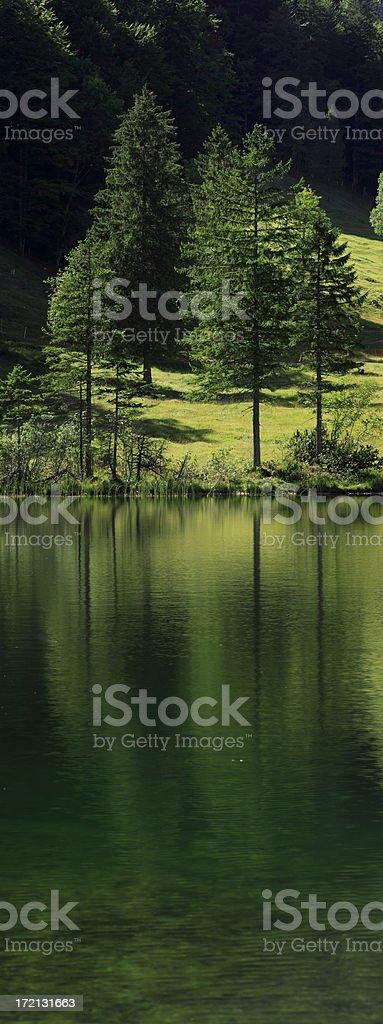 Mountain Lake - vertical panoramic royalty-free stock photo