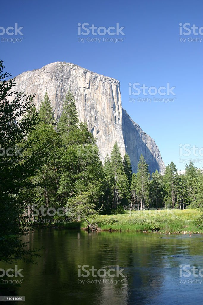 Mountain lake with forest trees stock photo