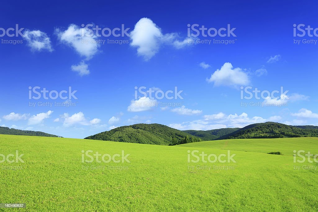 Mountain landscape - green field XXXL stock photo
