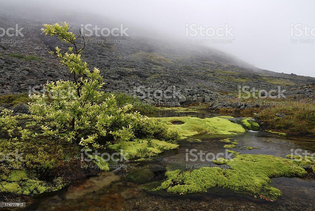 Mountain landscape in Khibiny Mountains stock photo