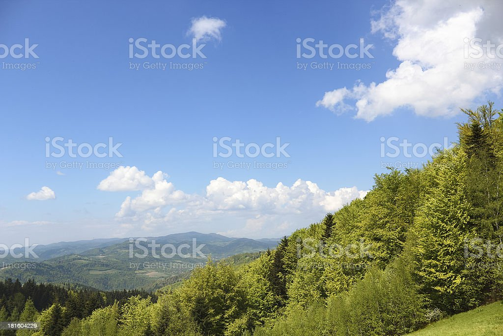 Mountain Landscape in May. Beskid, Poland. stock photo