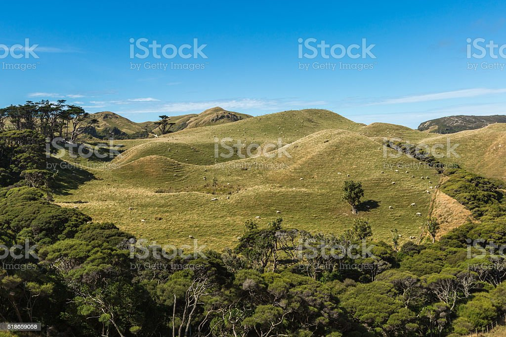 Mountain landscape in New Zealand stock photo
