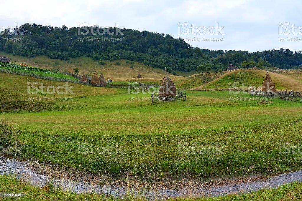 mountain landscape in summer morning, Romania, Fundatura Ponorului stock photo