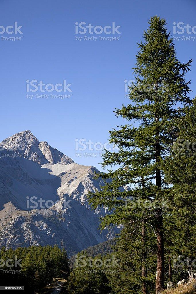 Mountain Landscape, Mount Chaberton Nobody royalty-free stock photo