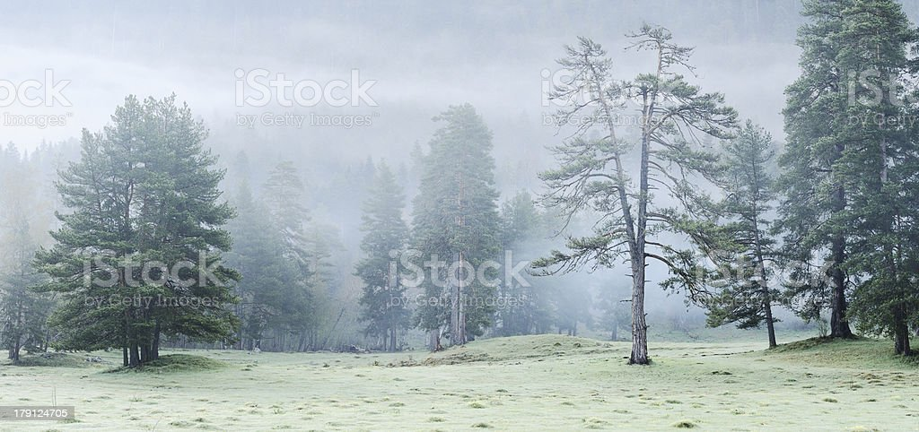 Mountain landscape. royalty-free stock photo