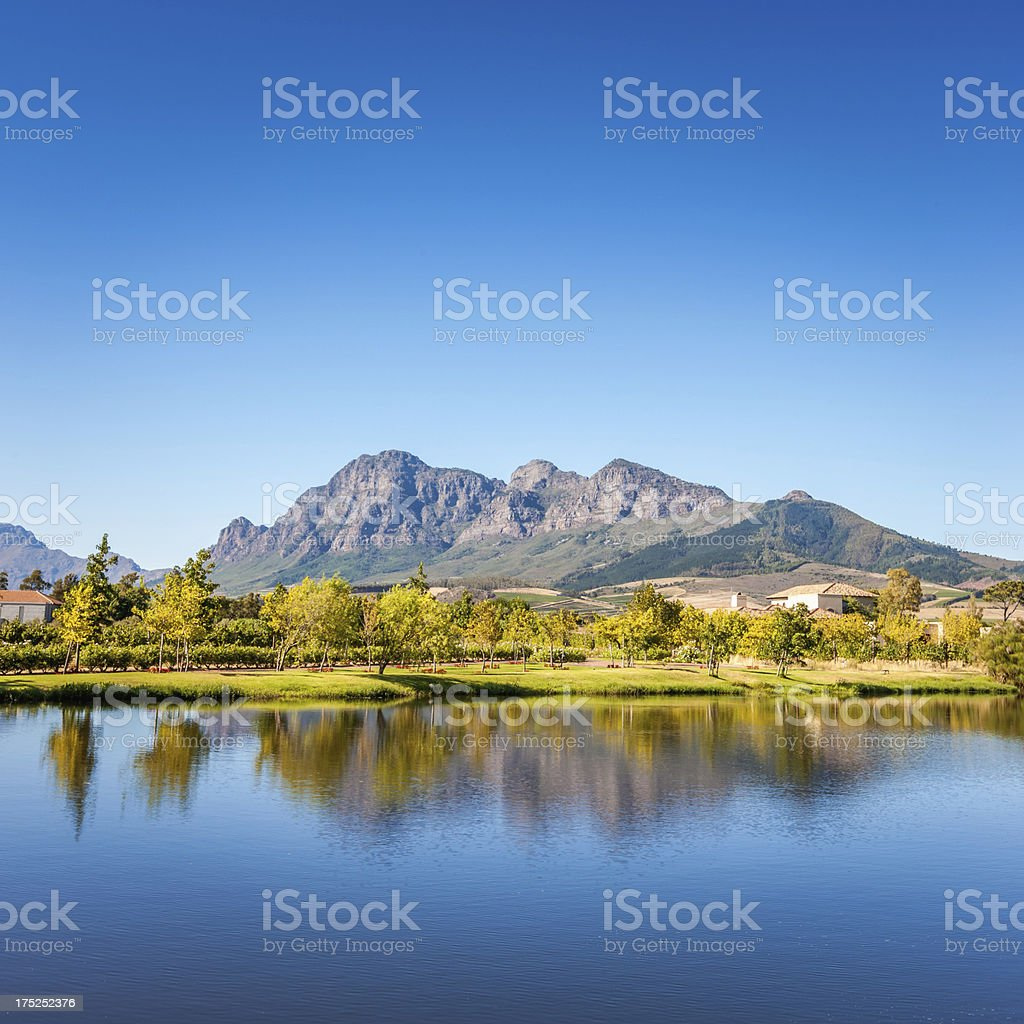 Mountain Landscape Winery,South Africa royalty-free stock photo