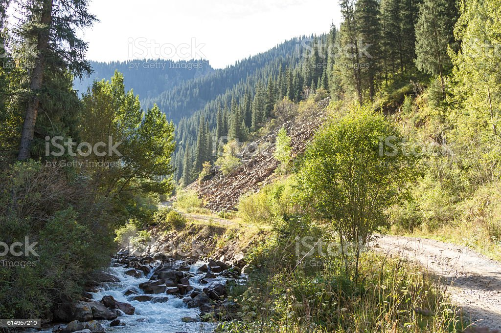 Mountain landscape with river stock photo