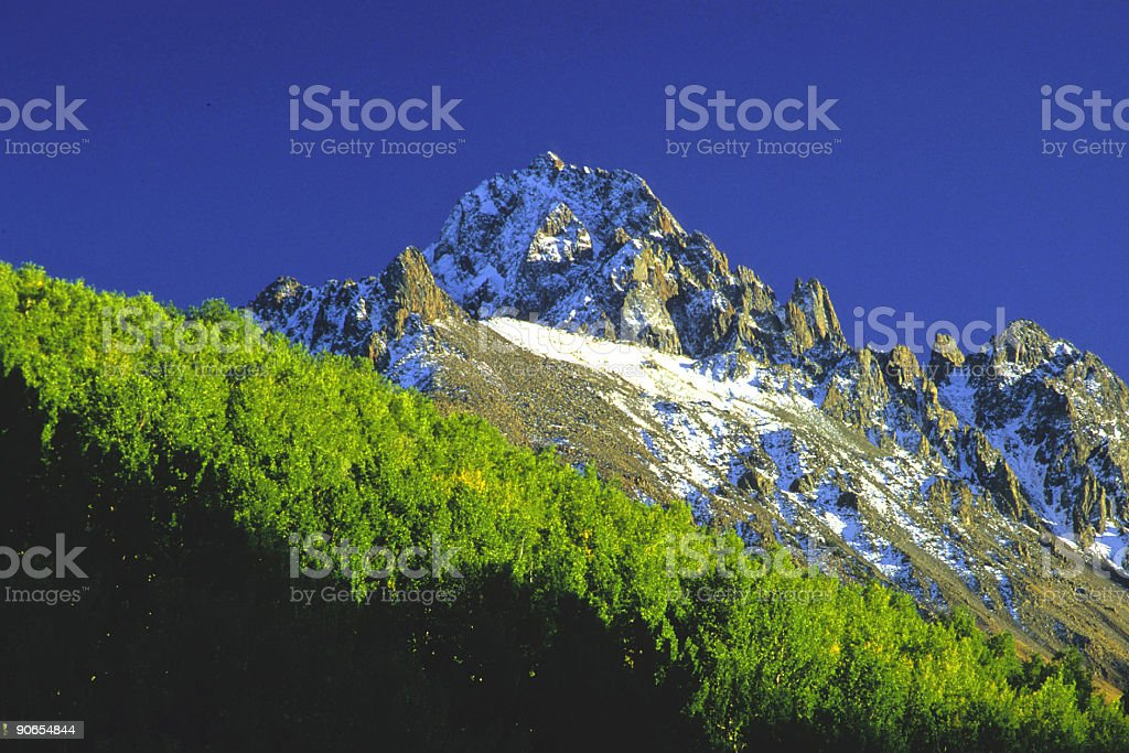 mountain landscape with snow and aspen trees stock photo
