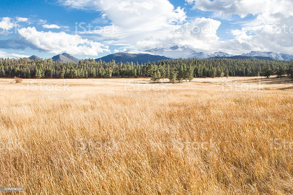 Mountain Meadow Landscape royalty-free stock photo